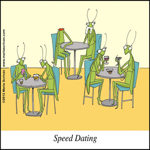 Life After Speed Dating - Blog