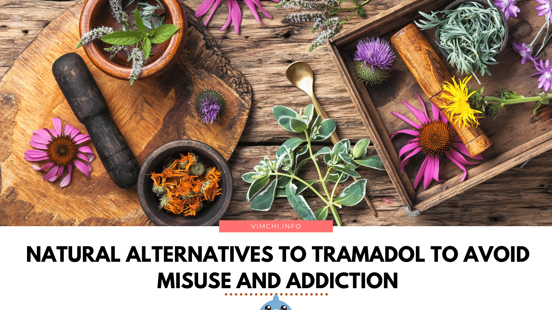 effective natural alternatives to tramadol