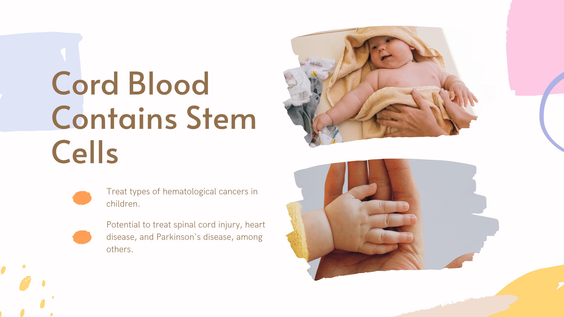 who can donate cord blood - cord blood contains stem cells