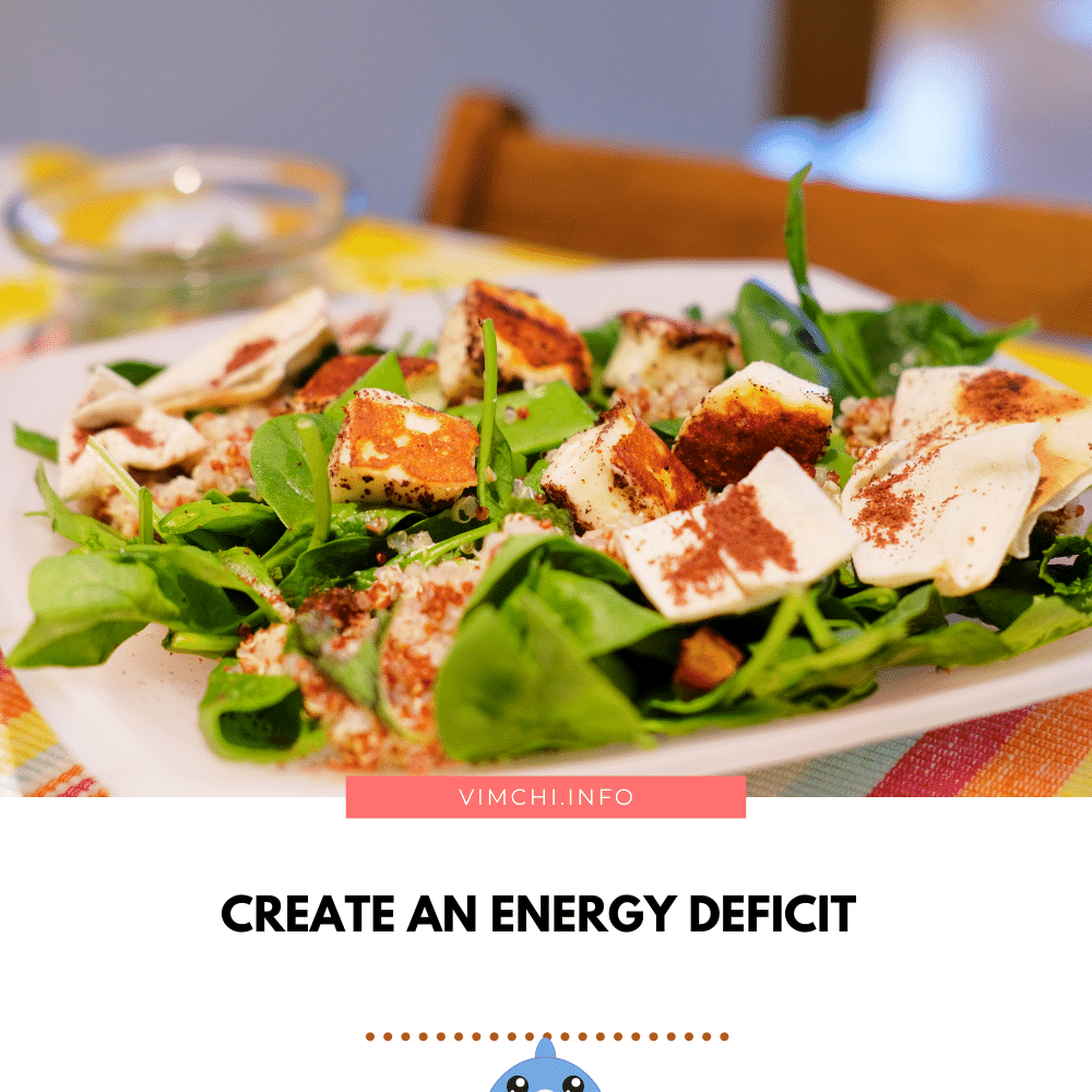 How to Lose Weight Eating 1 Meal a Day - creating an energy deficit