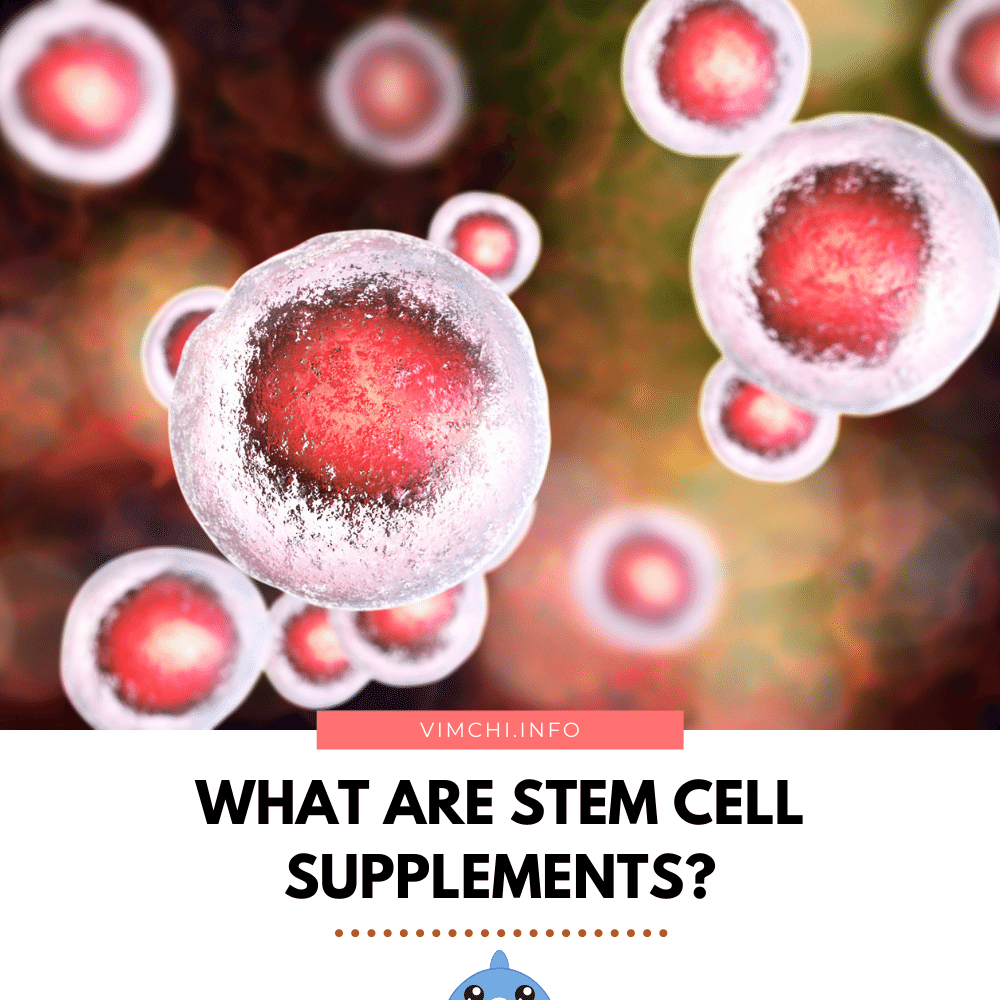 Are Stem Cell Supplements Effective