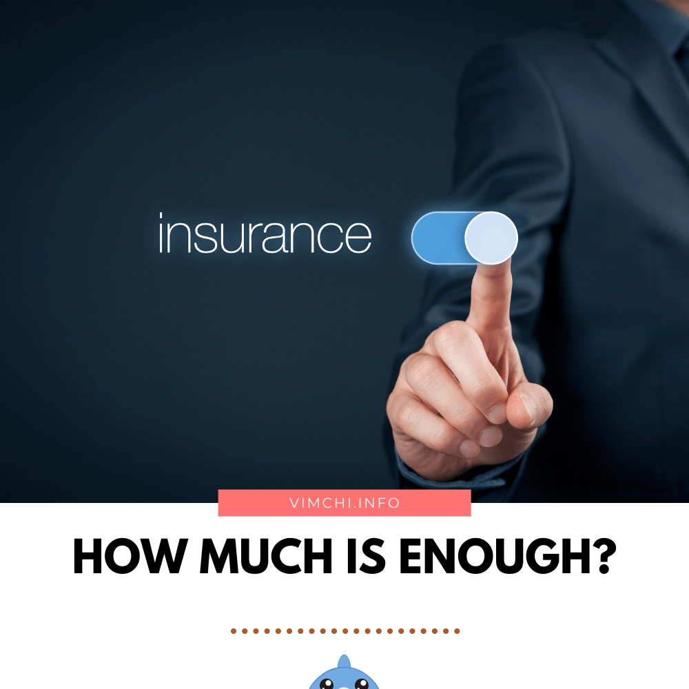 how much indemnity insurance do i need