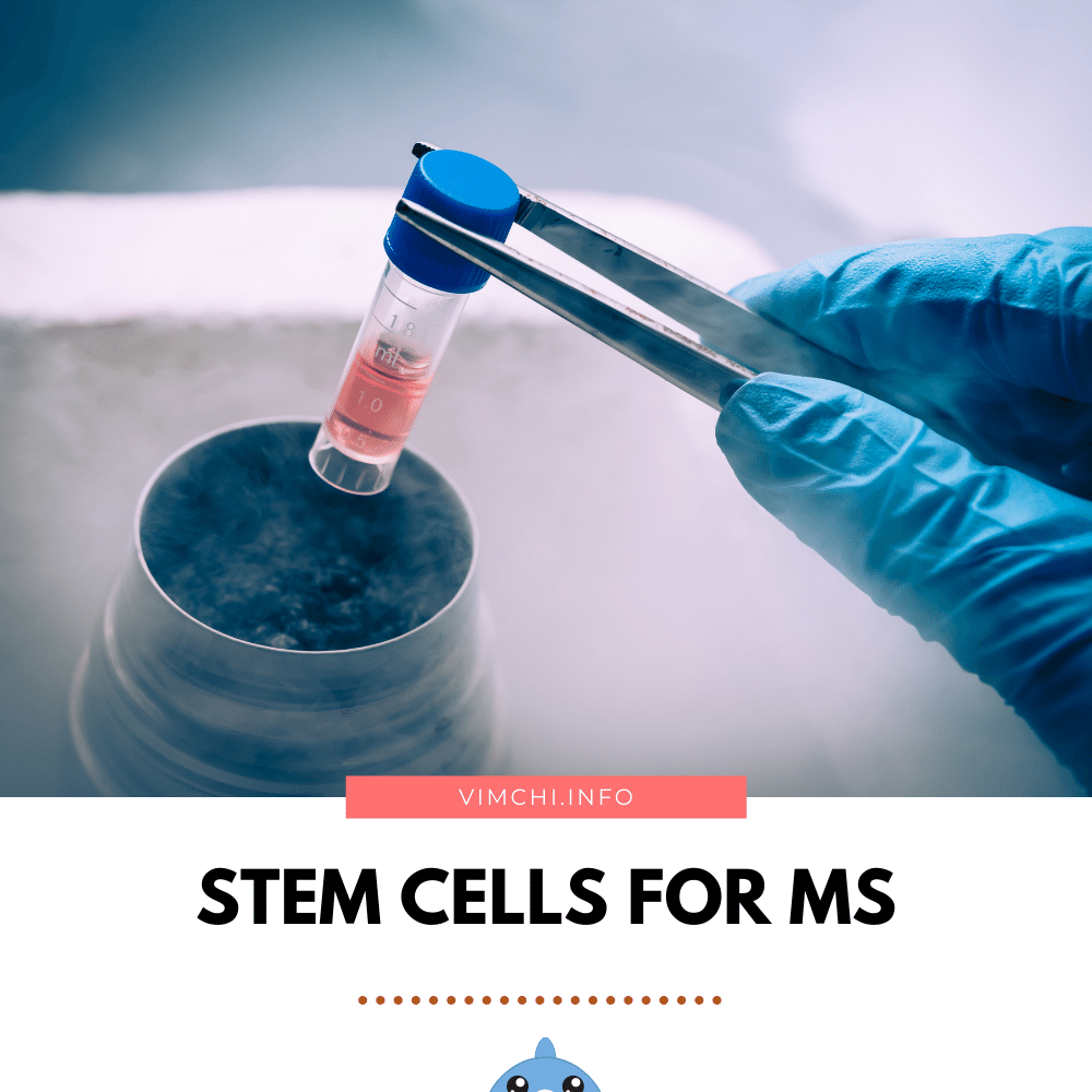 can stem cell cure MS